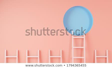 лестнице · успех · деловая · женщина · скалолазания · изолированный · белый - Сток-фото © dehooks