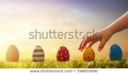 Easter egg Paskalya görüntü dekore edilmiş yumurta çim Stok fotoğraf © damonshuck