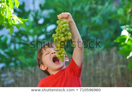 a cute blond eating grapes stock photo © photography33