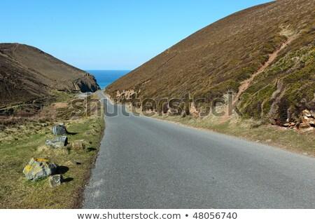 Narrow road to Chapel Porth beach in Cornwall UK. Stock photo © latent