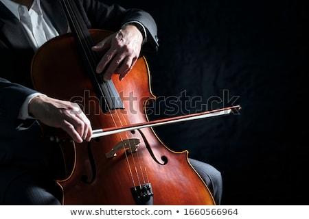 Cello Stock photo © piedmontphoto