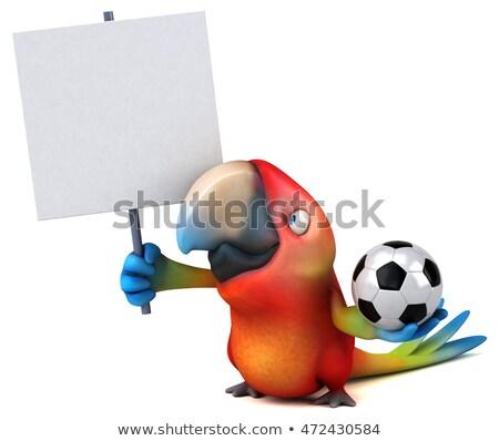 Funny Parrot. Soccer. Stock photo © RAStudio