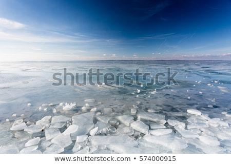 凍結 湖 バラトン湖 風景 ハンガリー語 冬 ストックフォト © samsem