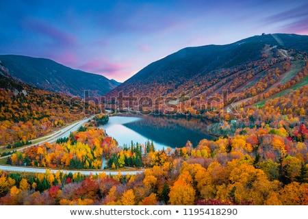 Peak Fall Foliage at a lake Stock photo © jaymudaliar