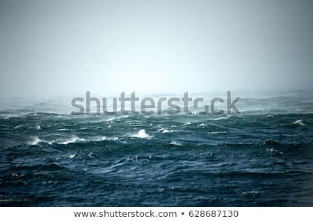 kış · deniz · bulutlar · gölge · fırtınalı · gün - stok fotoğraf © eldadcarin