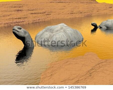 Víz 3d render kettő sár tájkép természet Stock fotó © Elenarts
