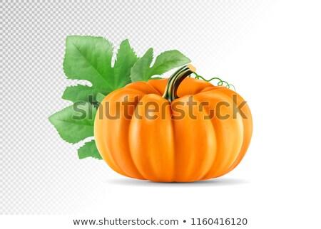 Herbst · Ernte · lecker · Kürbis · Feier · frisch - stock foto © aleksa_d