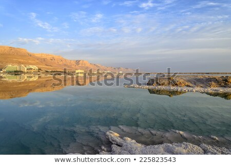 nice view the dead sea in israel stock photo © oleksandro