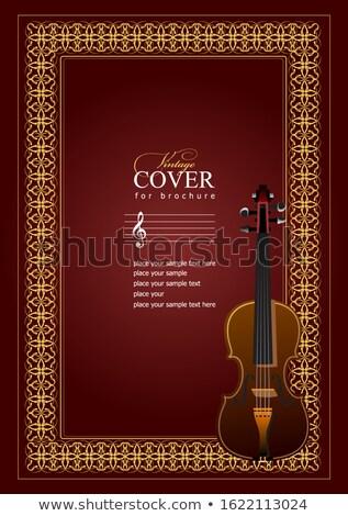 Dekken merkt viool afbeelding retro-stijl vector Stockfoto © leonido
