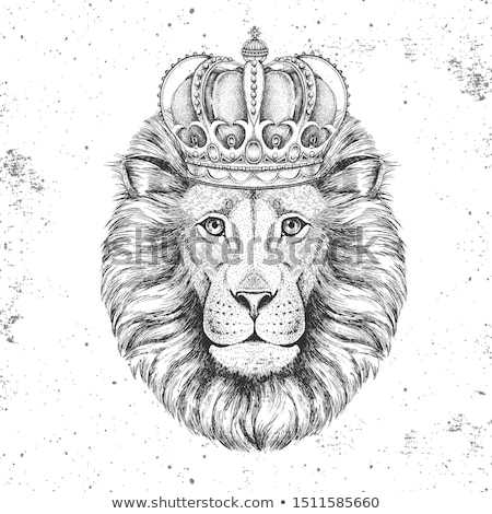 sketch cute lion with crown in vintage style stock photo © kali