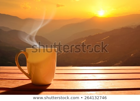 morning cup of cappuccino in the morning sun Stock photo © martince2