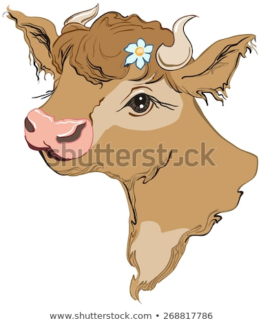 brown cow head with a flower in her hair side view stock photo © orensila