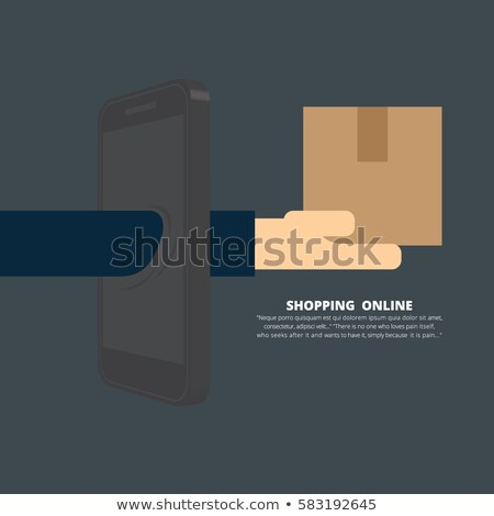 Rápido bens entrega isométrica vetor imagem Foto stock © TarikVision