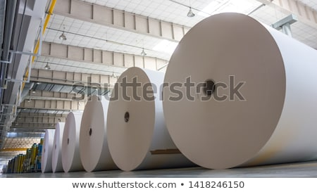 white paper roll stock photo © tang90246