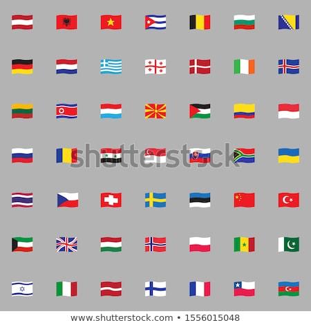 ストックフォト: スイス · アルゼンチン · フラグ · パズル · 孤立した · 白