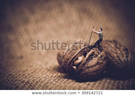 druk · ei · stress · geïsoleerd · zwarte · pijn - stockfoto © kirill_m
