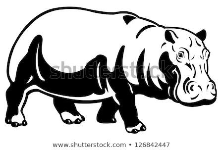 Hipopotam ilustracja czarny brązowy konia krowy Zdjęcia stock © Morphart