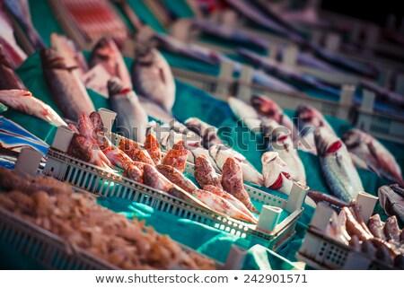 fresh fish at a market in istanbul stock photo © elxeneize