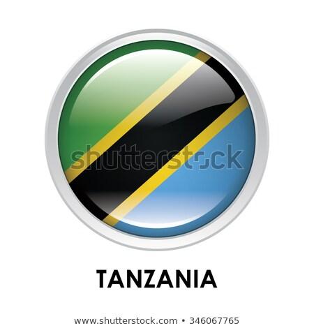Танзания флаг овальный кнопки серебро изолированный Сток-фото © Bigalbaloo