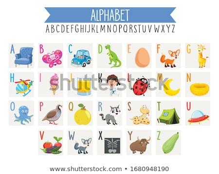 Woordenschat kaarten sport illustratie achtergrond Stockfoto © bluering