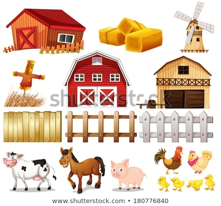 A group of things found at the farm Stock photo © bluering