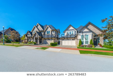 Maison individuelle illustration maison herbe bâtiment design Photo stock © bluering