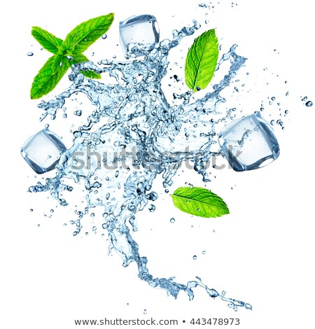 fresh water with mint and ice stock photo © digifoodstock