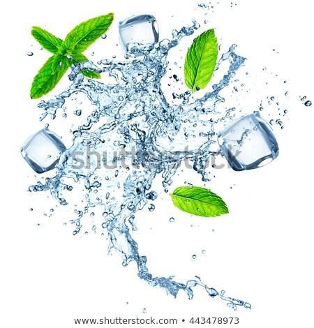 água doce de gelo vidro água Foto stock © Digifoodstock