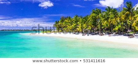 Tropical vacations - turquoise sea and white sandy beaches of Mauritius island stock photo © Freesurf