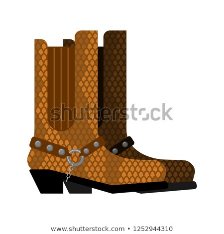Cowboy boots made python leather. Australia shoes made crocodile Stock photo © popaukropa