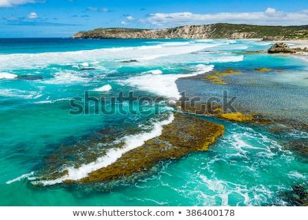 tengerpart · hullámok · kenguru · sziget · Dél-Ausztrália · tenger - stock fotó © dirkr
