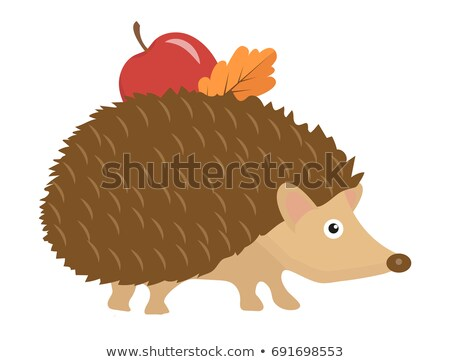 Cute erizo manzana hoja icono Cartoon Foto stock © lucia_fox