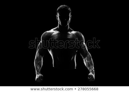 cartoon · bodybuilder · teken · illustratie · mannen · persoon - stockfoto © popaukropa