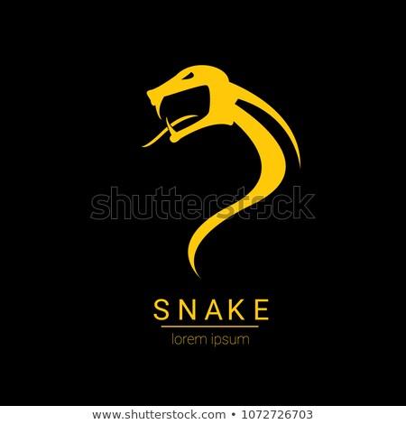 Foto stock: Vector Snake Logo Template Danger Snake Icon Viper Black Silhouette