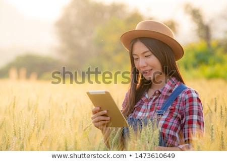 Női gazda táblagép rozs termény mező Stock fotó © stevanovicigor