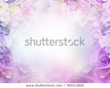 Soyut mor çiçekler bahar yaprak arka plan Stok fotoğraf © maya2008