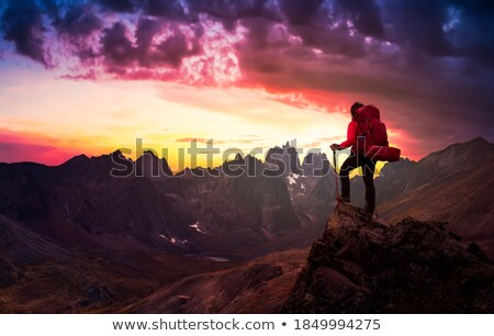 Twilight in the Yukon Stock photo © wildnerdpix
