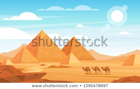 Stock photo: Pyramid and Camel with Desert Scene