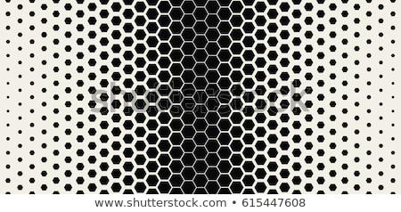 Petek model vektör kumaş poster bez Stok fotoğraf © SArts