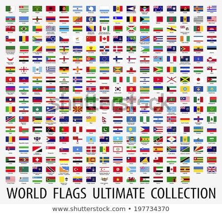 Япония флаг набор изолированный белый дизайна Сток-фото © doomko