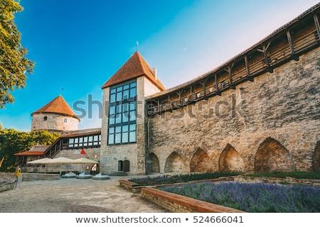 Toren stad muur Tallinn Estland middeleeuwse Stockfoto © sarahdoow