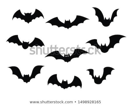Halloween Cartoon Bat Silhouette Stock photo © Krisdog