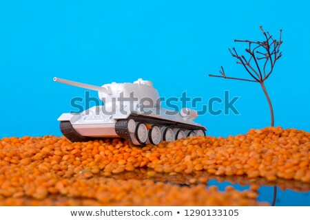 soviet tank model t 34 stock photo © nobilior