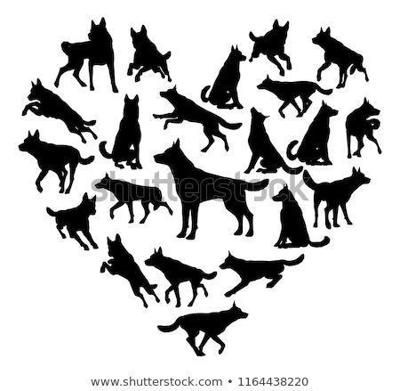 German Shepard Alsatian Dog Heart Concept Stock photo © Krisdog