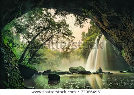пещере воды лес иллюстрация фон искусства Сток-фото © bluering