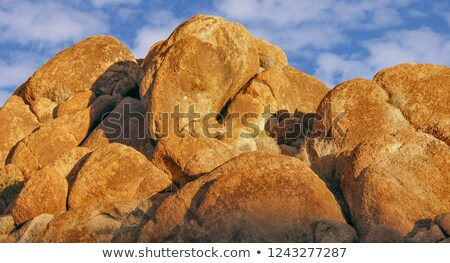 Jumbo Rocks in Late Afternoon Sunlight Stock photo © yhelfman