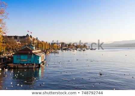 Zurich lake waterfront landmarks autumn view Stock photo © xbrchx