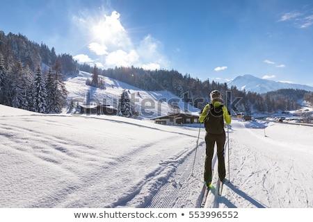 Сток-фото: женщину · крест · стране · лыжах · зимние · виды · спорта · снега