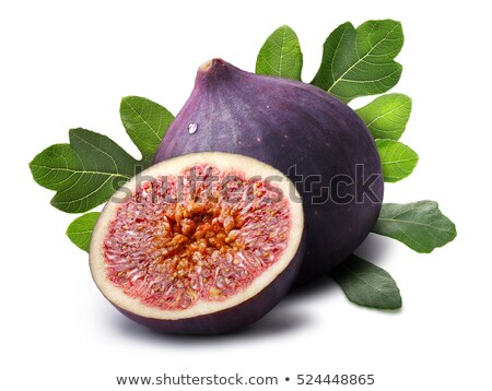 Fig fruits (Ficus carica), paths Stock photo © maxsol7