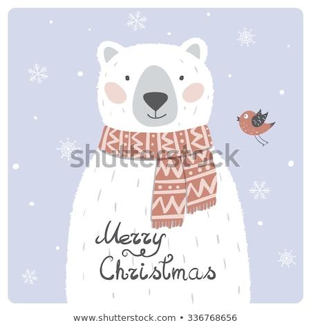 Frame modello cute orso polare illustrazione carta Foto d'archivio © colematt